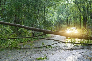 Storm Cleanup Peoria IL